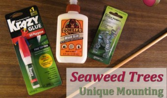 Unique Mounting – Seaweed Trees